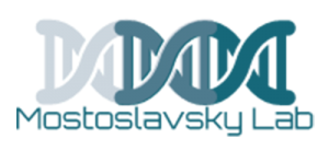 Raul Mostoslavsky Laboratory